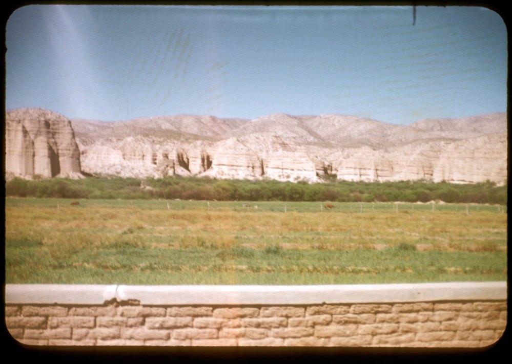 Back yard view at S&J Ranch