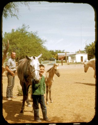Charles and Steven Gillespie with Blue, colt Honey and Smokey